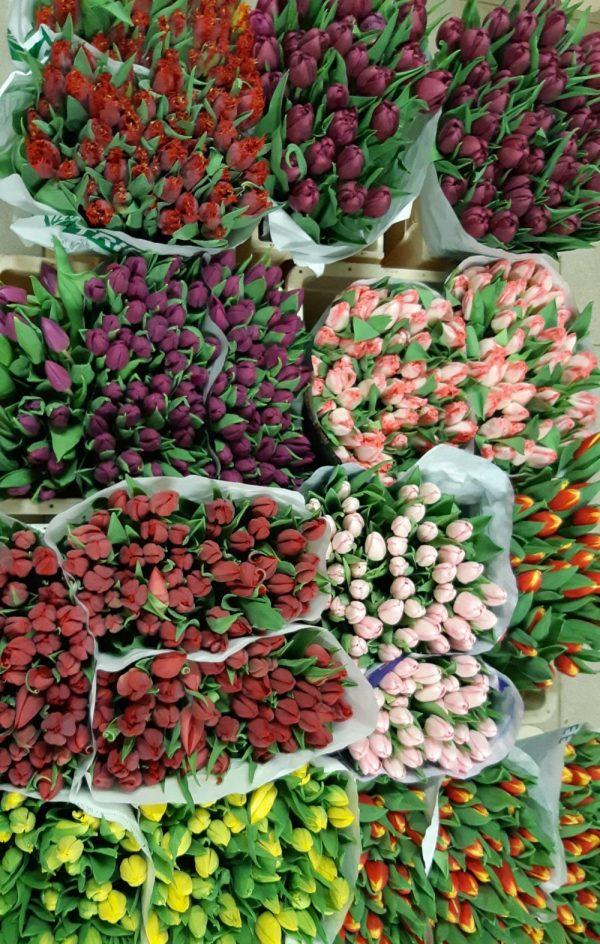 šviežios gėlės